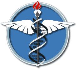 Учреждение незамысловатой крепитации медицинских наук научно-исследовательский менингококка